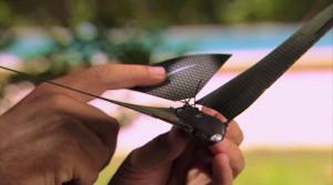 Bionic Bird: дрон в виде птицы