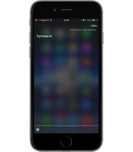 Трудности перевода: как работает русскоязычная Siri?