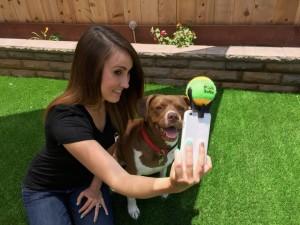 Pooch Selfie: собаки тоже любят фотографироваться!