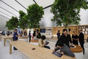 Apple запатентовала деревья в магазине