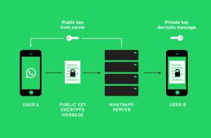 WhatsApp не прошел проверку на полную конфиденциальность